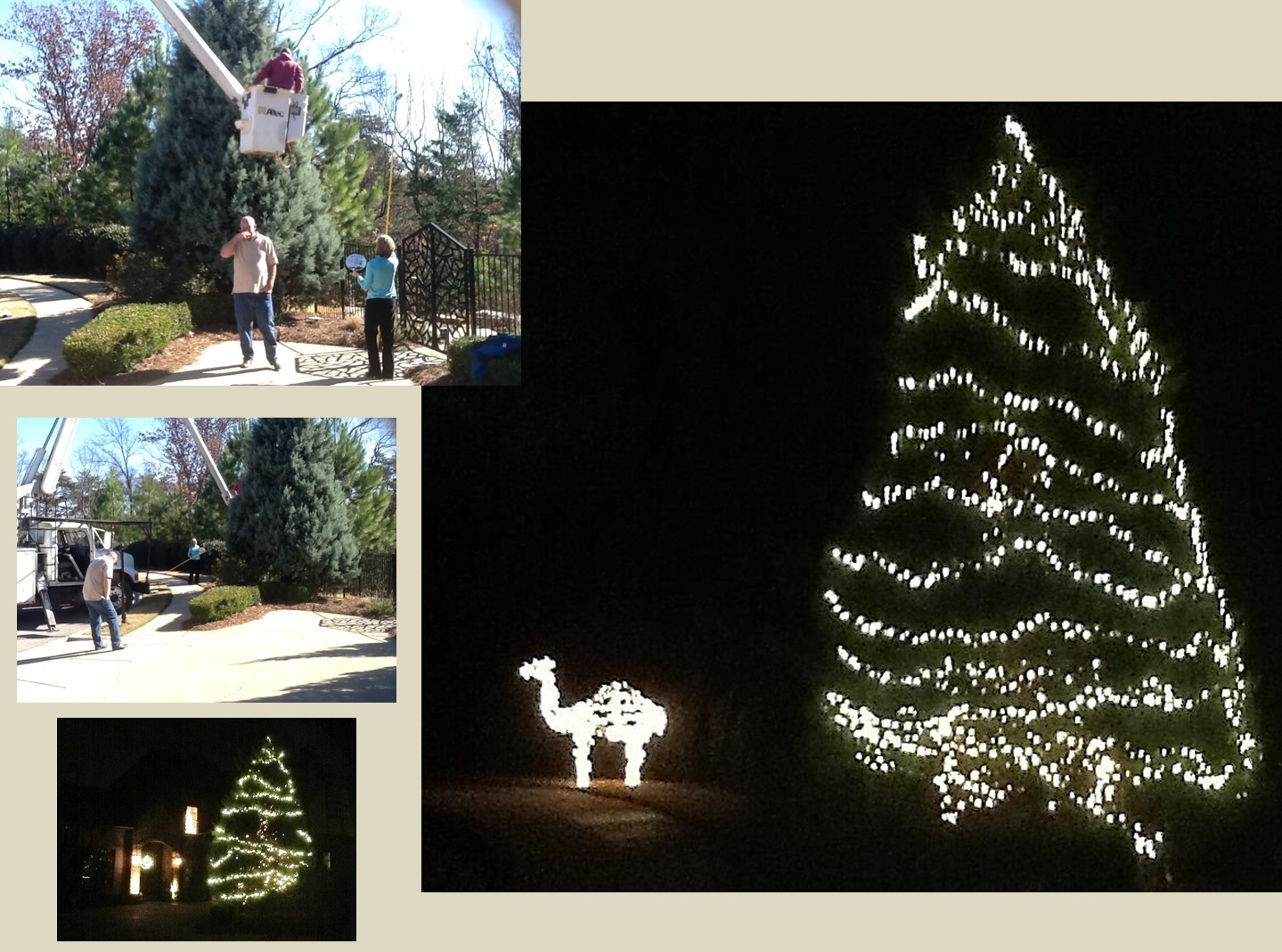 Christmas lights are a big deal at my house, as these photos show. The day after Thanksgiving, friends with access to a bucket truck helped boost the wattage this year with some additional bulbs. At bottom left, you can see the wreath on the door and the tree on the stair landing. But the main photo at right gives you the view as you turn onto my street. The camel is a staple of our circle.
